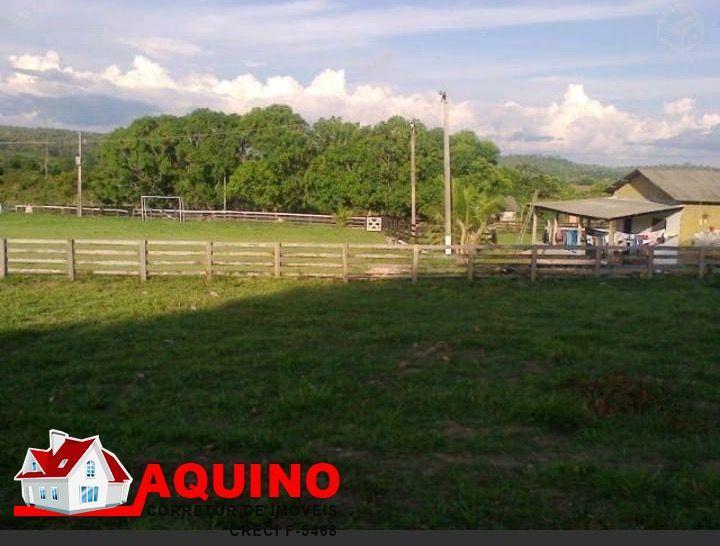 Fazenda a venda 387,20 hectares em Guaranta Do Norte/MT