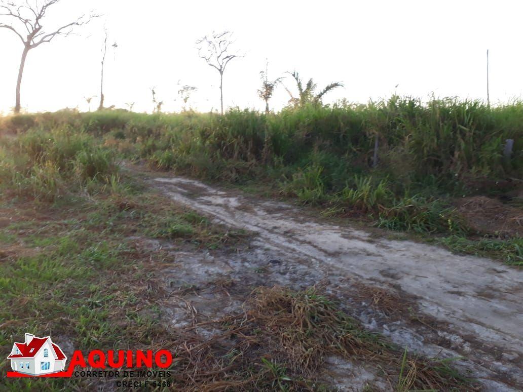 Fazenda a venda 1064,80 hectares em Novo Progresso/PA