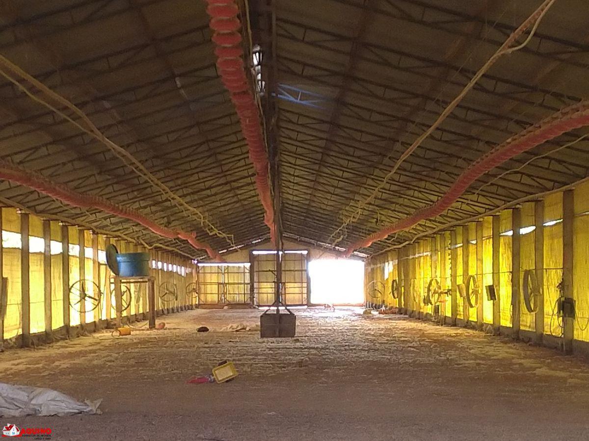 Barracão de aviário a venda com 1716 m² em Sinop/MT