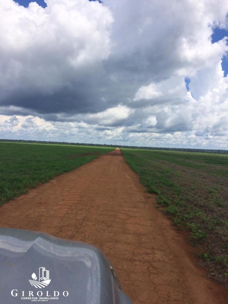 Fazenda - Rural